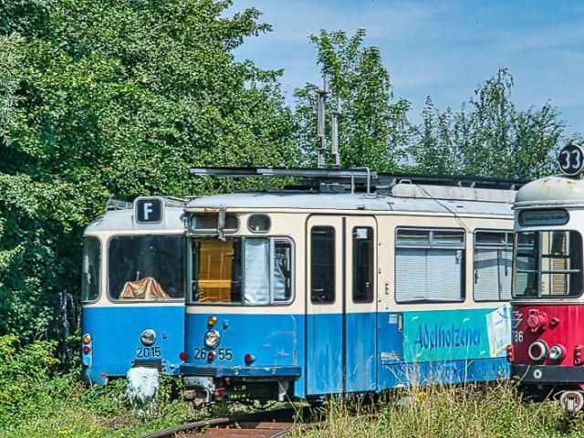 Alois_Nagl_Blindheim_Tram-09054.jpg