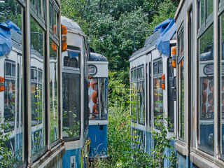 Alois_Nagl_Blindheim_Tram-09116.jpg
